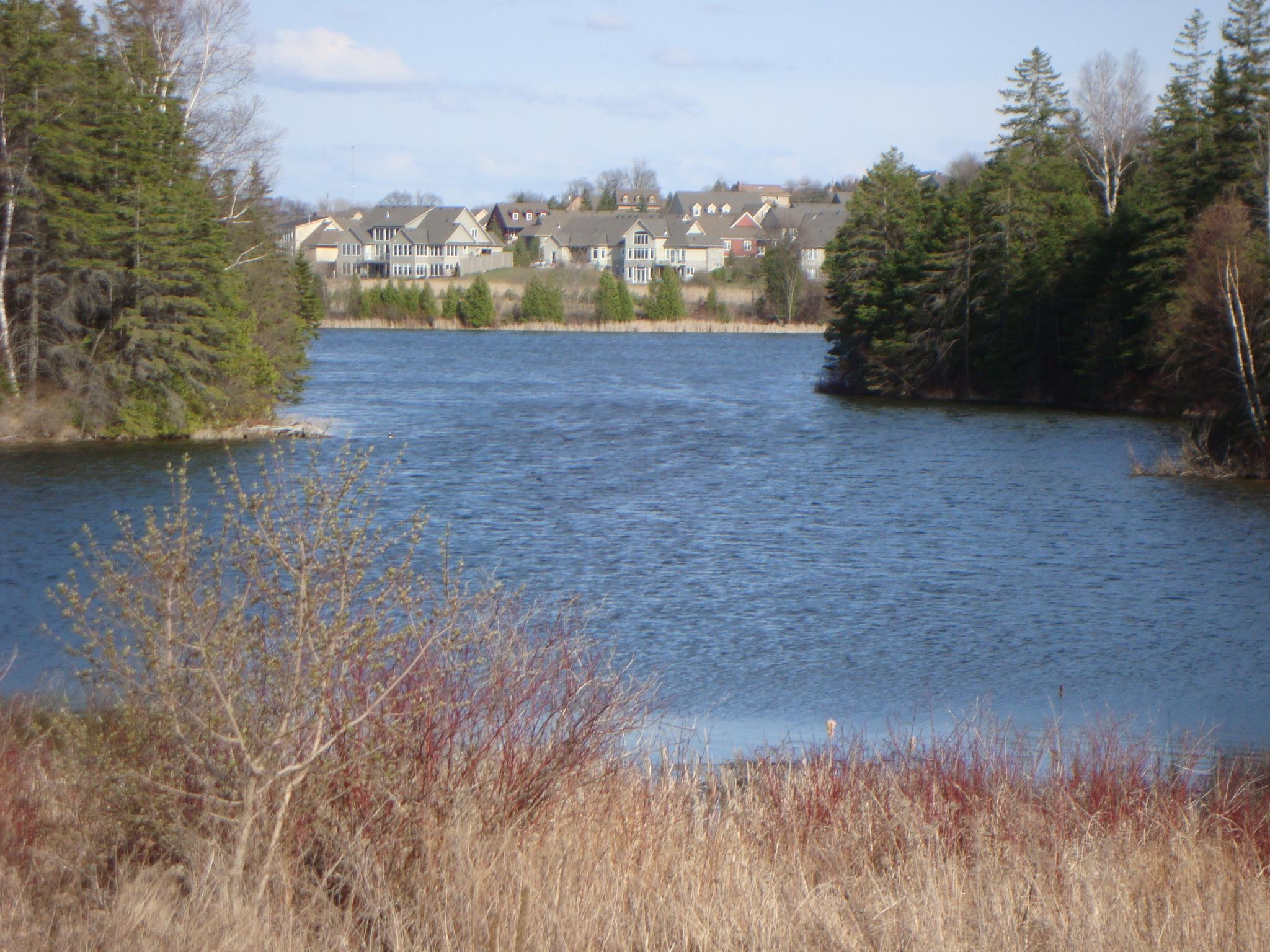 island-lake-living-mono